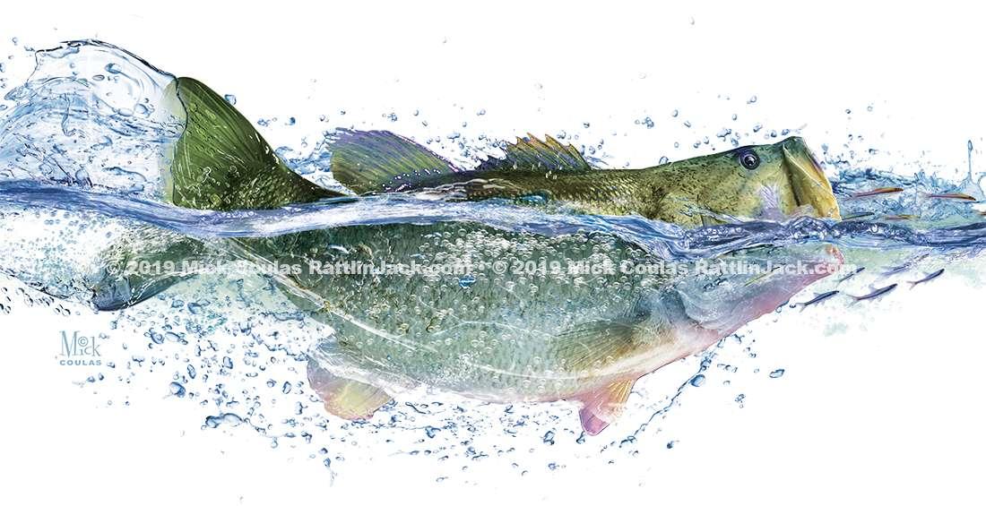 Example of Fish art for Custom UPF Fishing Shirts